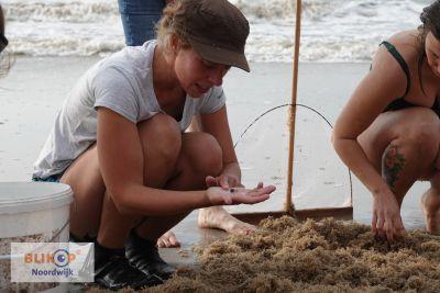 Moedertje Groen presenteert haar boek op het strand van Noordwijk.