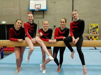 DOS in de medailles bij Turn- en Funwedstrijden in Leiden